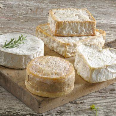 La ruta de los quesos con denominación AOP