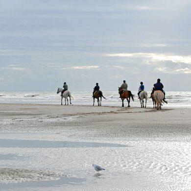 5 playas de Normandía donde montar a caballo